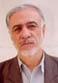 Hasan Fathi